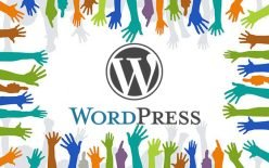 WordPress sin ánimo de lucro